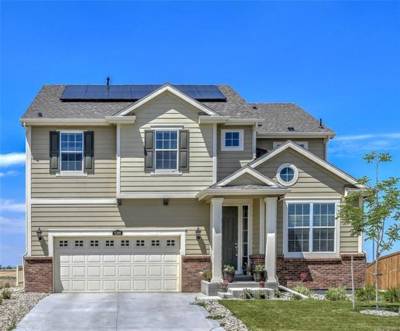 5391 E 143rd Drive, Thornton, CO 80602 (#7936421) :: Bring Home Denver