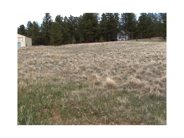 484 Duesouth Road, Florissant, CO 80816 (#7938565) :: The DeGrood Team