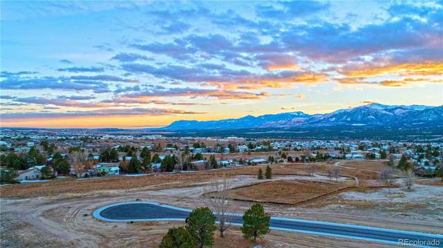 390 Silver Rock Place, Colorado Springs, CO 80921 (#7938570) :: Mile High Luxury Real Estate