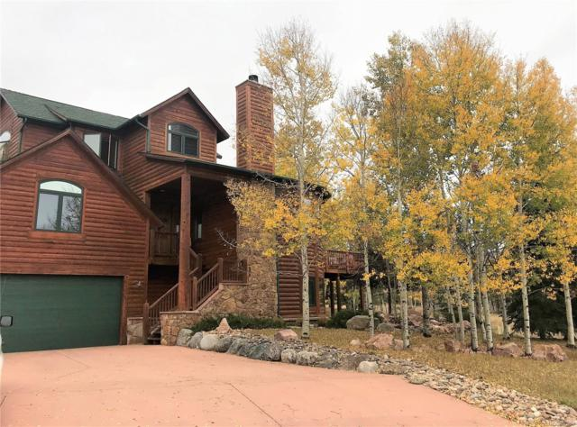 3230 Regent Drive, Woodland Park, CO 80863 (#7942519) :: 5281 Exclusive Homes Realty