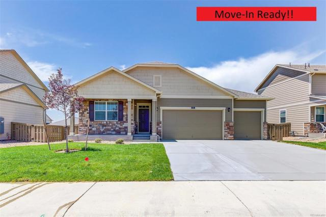 5908 High Timber Circle, Castle Rock, CO 80104 (#7955900) :: The HomeSmiths Team - Keller Williams