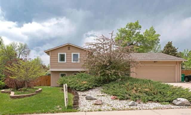 6347 S Benton Way, Littleton, CO 80123 (#7956179) :: The Healey Group