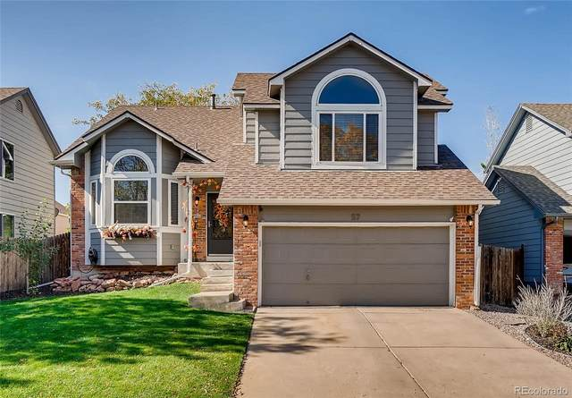 57 S Lindsey Street, Castle Rock, CO 80104 (#7957211) :: The Harling Team @ Homesmart Realty Group