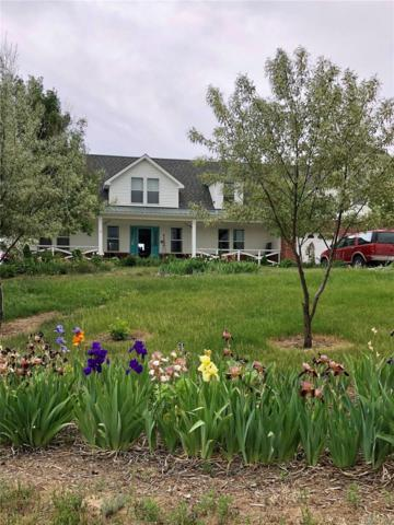 34410 Columbine Trail, Elizabeth, CO 80107 (#7958917) :: My Home Team