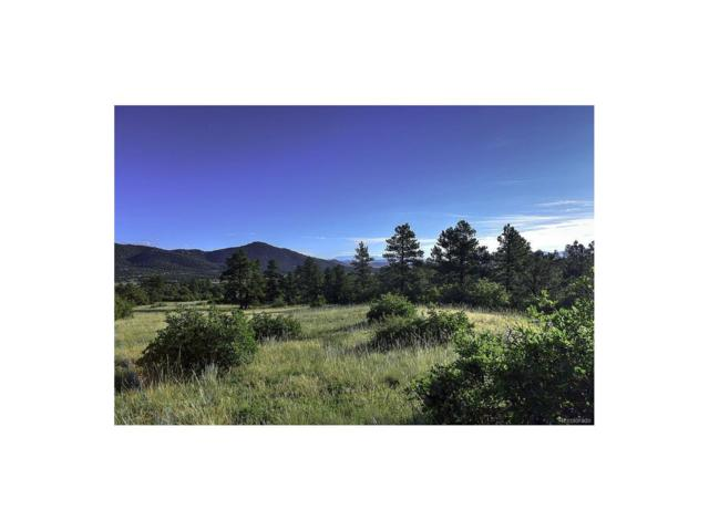 Lot 40 Pheasant Loop, Westcliffe, CO 81252 (#7959250) :: Bring Home Denver