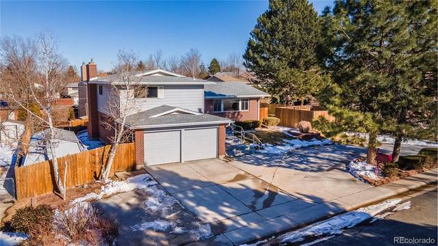 10578 Varese Lane, Northglenn, CO 80234 (#7959502) :: Hudson Stonegate Team