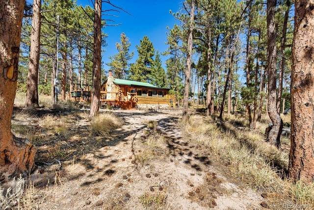 125 Snake Lake Drive, Red Feather Lakes, CO 80545 (#7959653) :: Own-Sweethome Team