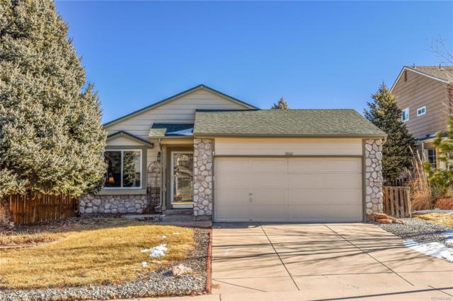 7802 Kyle Way, Littleton, CO 80125 (MLS #7959783) :: 8z Real Estate