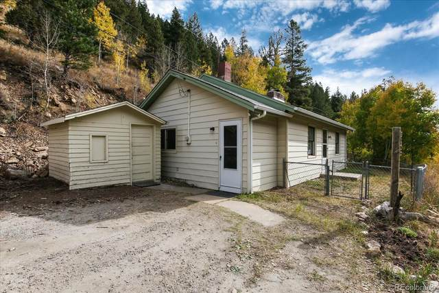 2598 Mill Creek Road, Dumont, CO 80436 (#7961295) :: The DeGrood Team