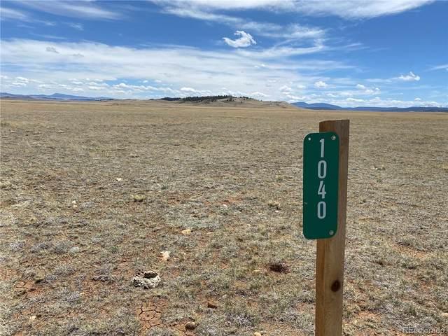 1040 Bare Trail, Hartsel, CO 80449 (#7963289) :: The DeGrood Team
