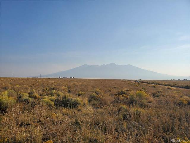 10 Grand Junction Road, Blanca, CO 81123 (#7966863) :: Signature Realty, Inc.