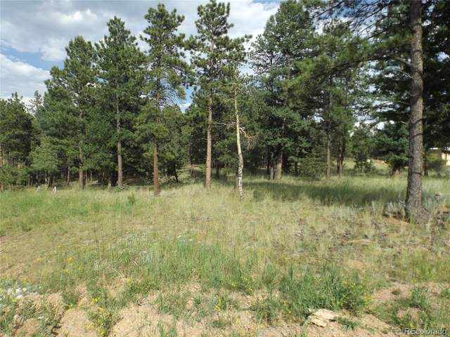 46 Firehouse Road, Pine, CO 80470 (MLS #7967242) :: 8z Real Estate