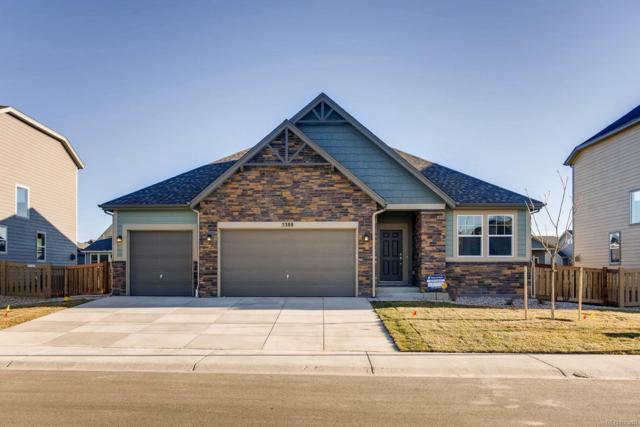 5388 Hallowell Park Drive, Timnath, CO 80547 (#7968317) :: The Tamborra Team