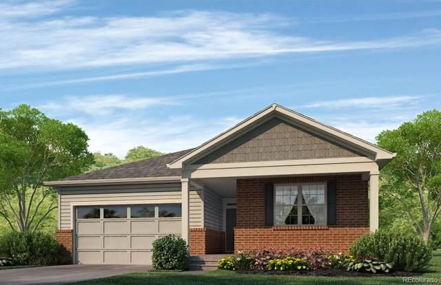 7443 E 157th Avenue, Thornton, CO 80602 (#7974476) :: Real Estate Professionals