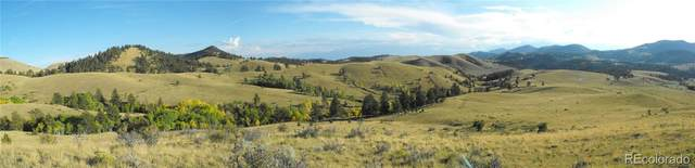 Waugh Mtn Rd, Cotopaxi, CO 81212 (MLS #7975657) :: 8z Real Estate