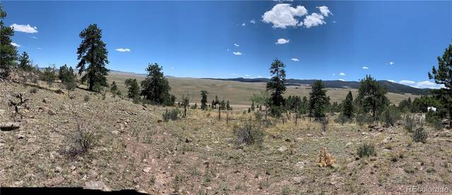 168 Concho Trail, Hartsel, CO 80449 (#7976862) :: The Harling Team @ Homesmart Realty Group