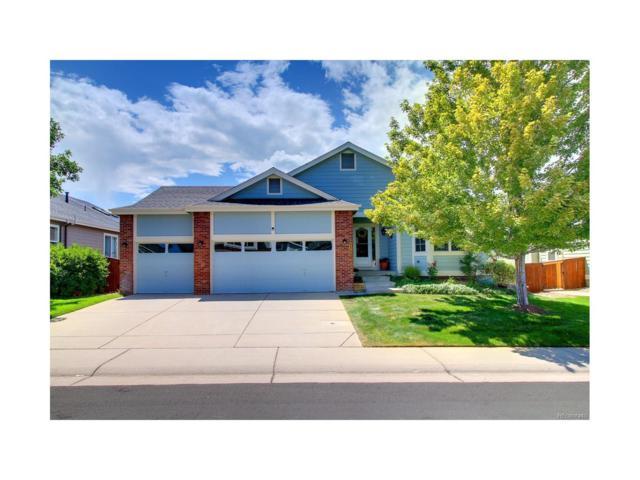 9707 Westbury Way, Highlands Ranch, CO 80129 (MLS #7987829) :: 8z Real Estate