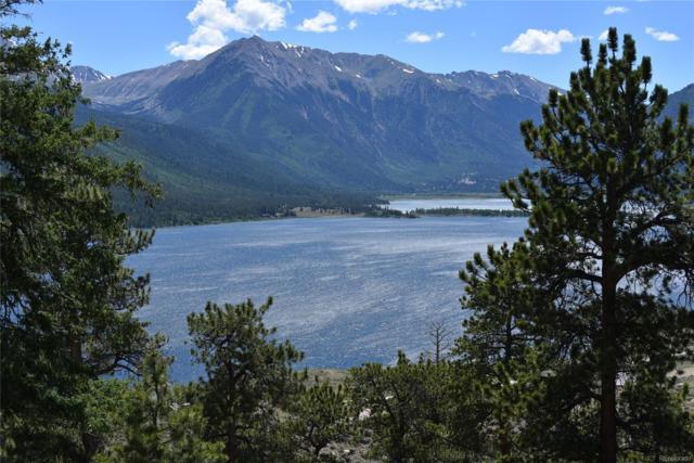 360 Reva Ridge Road, Twin Lakes, CO 81251 (#7987996) :: Wisdom Real Estate