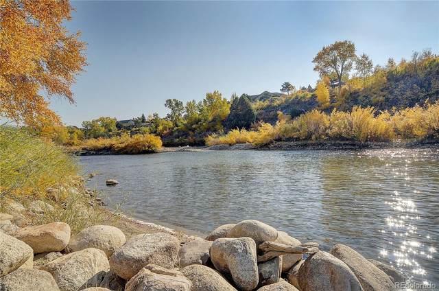 12424 Gold Water Circle, Salida, CO 81201 (#7993821) :: Bring Home Denver with Keller Williams Downtown Realty LLC