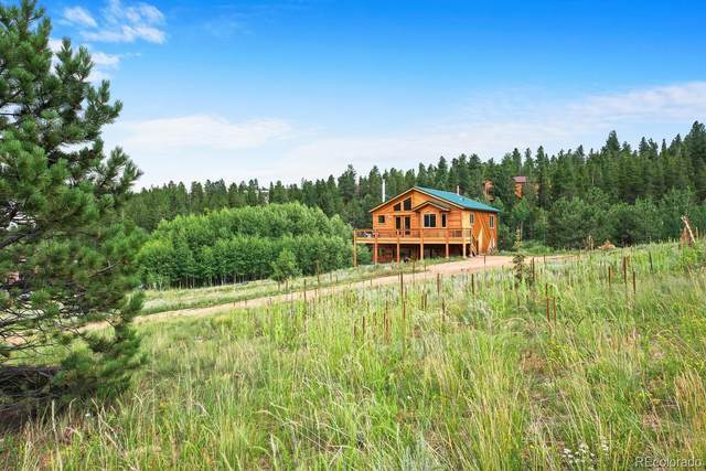 1328 Clark Road, Bailey, CO 80421 (#7995238) :: HomeSmart Realty Group