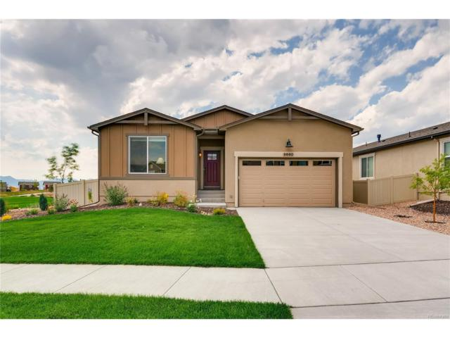 8660 Dry Needle Place, Colorado Springs, CO 80908 (MLS #8001476) :: 8z Real Estate