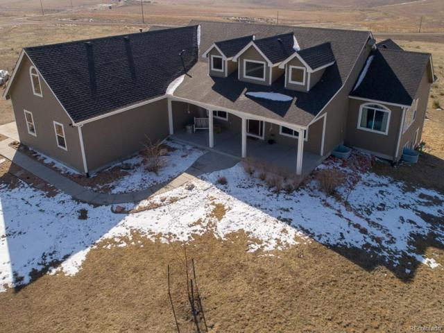 59101 Berry Place, Strasburg, CO 80136 (#8003418) :: The Heyl Group at Keller Williams