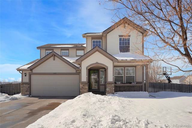 12602 Jersey Circle, Thornton, CO 80602 (#8006677) :: iHomes Colorado