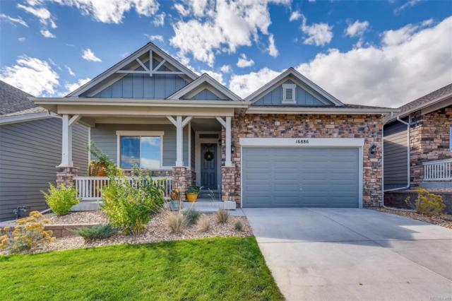 16886 W 85th Lane, Arvada, CO 80007 (MLS #8007025) :: 8z Real Estate