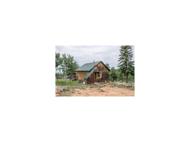 70 Fawn Drive, Bailey, CO 80421 (MLS #8011422) :: 8z Real Estate