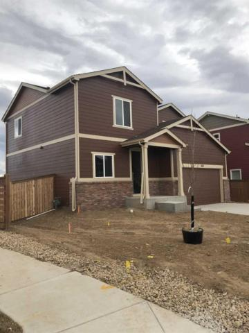 3113 Crux Drive, Loveland, CO 80537 (#8014115) :: The Griffith Home Team