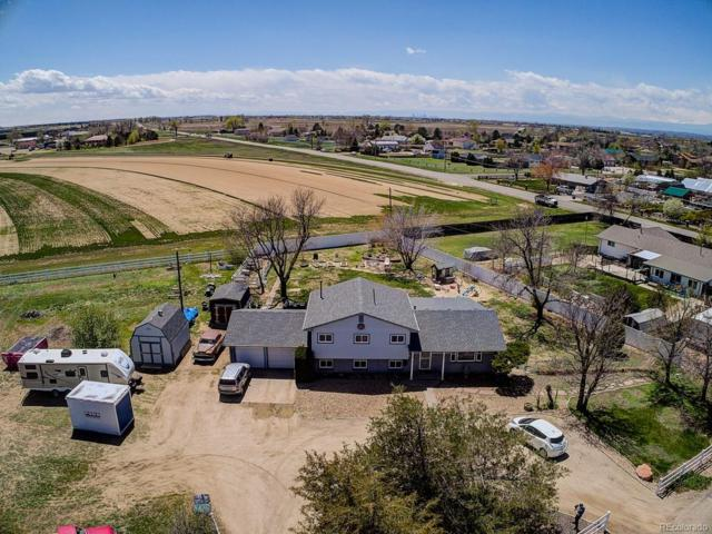 14566 E 134th Place, Brighton, CO 80601 (#8014818) :: The Healey Group