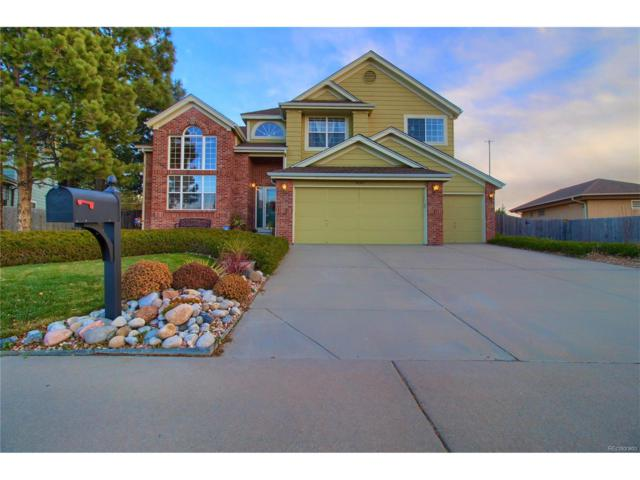 5692 S Yampa Street, Centennial, CO 80015 (#8018385) :: ParkSide Realty & Management