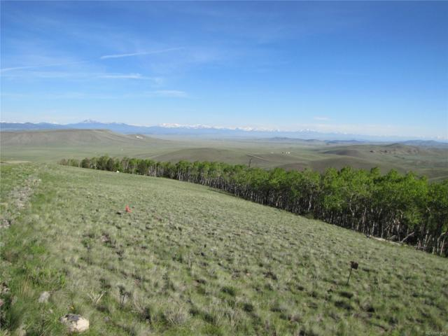 0 Kasihta Trail, Hartsel, CO 80449 (#8019738) :: James Crocker Team