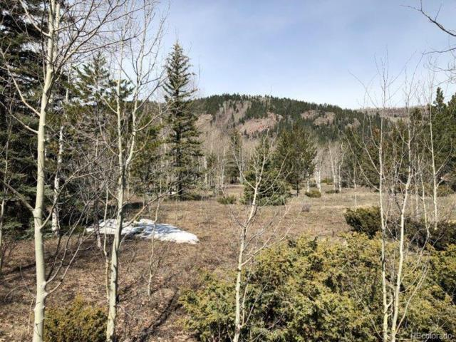 River Run Drive, Antonito, CO 81120 (MLS #8024032) :: 8z Real Estate