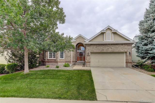 5310 Shetland Court, Highlands Ranch, CO 80130 (MLS #8024795) :: Find Colorado