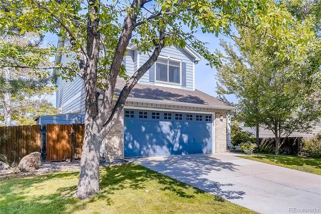10623 Grove Court, Westminster, CO 80031 (MLS #8025740) :: Bliss Realty Group