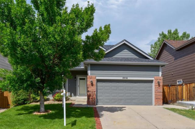 8854 Copeland Street, Littleton, CO 80126 (#8027531) :: The HomeSmiths Team - Keller Williams