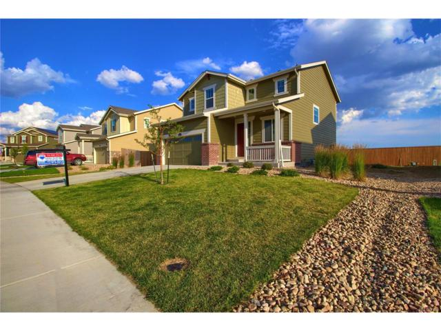2560 E 160th Place, Thornton, CO 80602 (MLS #8033077) :: 8z Real Estate