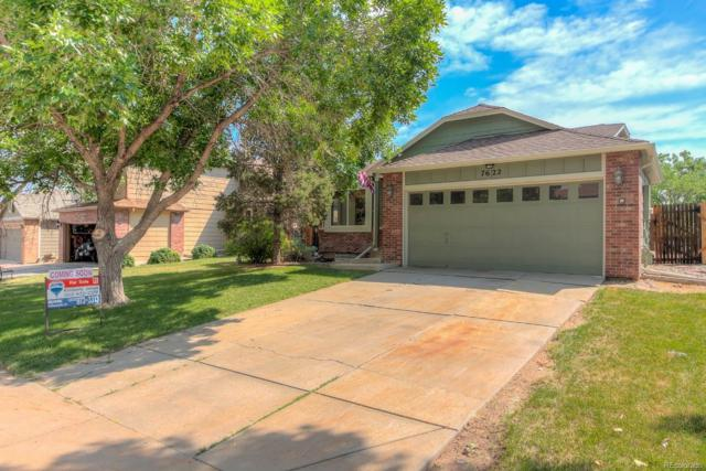 7622 Jared Way, Littleton, CO 80125 (#8036041) :: My Home Team