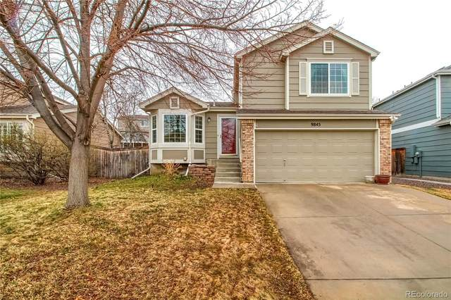 9845 Stonebriar Lane, Parker, CO 80134 (#8039863) :: Briggs American Properties