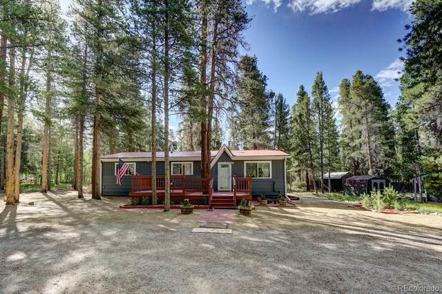 1460 Mountain View Drive, Leadville, CO 80461 (#8039976) :: The DeGrood Team