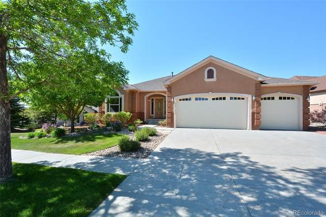 13133 Crane Canyon Loop, Colorado Springs, CO 80921 (#8040745) :: Portenga Properties