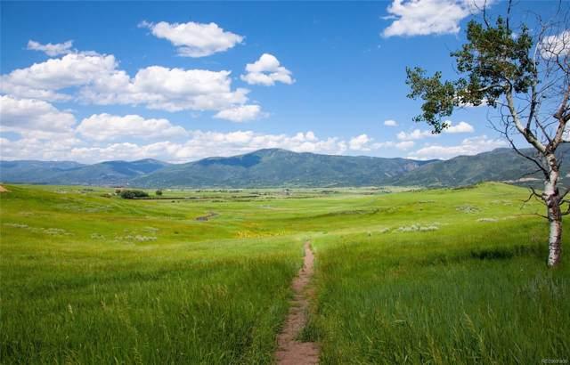 29800 Sidney Peak Trail, Steamboat Springs, CO 80487 (#8045060) :: Bring Home Denver with Keller Williams Downtown Realty LLC