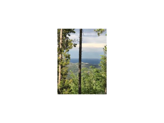 9971 City View Drive, Morrison, CO 80465 (MLS #8049608) :: 8z Real Estate