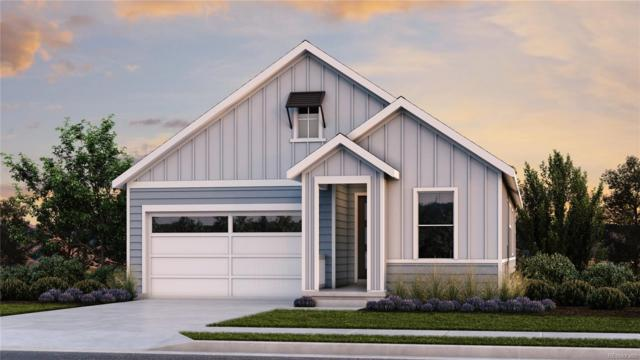 564 W 174th Place, Broomfield, CO 80023 (#8052928) :: The DeGrood Team