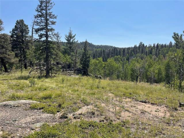 148 Cheyenne Way, Florissant, CO 80816 (MLS #8054366) :: Bliss Realty Group