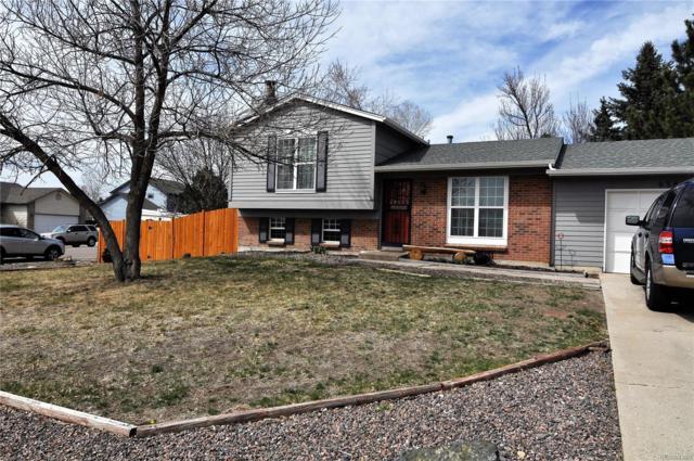 6583 E Rustic Drive, Parker, CO 80138 (#8054606) :: The Peak Properties Group
