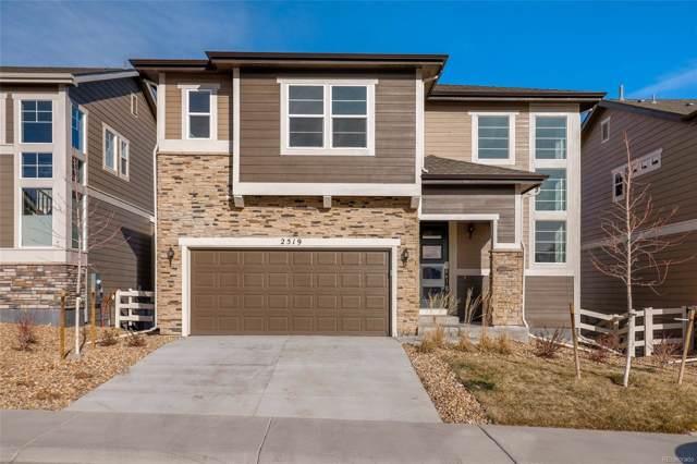 2519 Loon Lane, Castle Rock, CO 80104 (MLS #8054910) :: 8z Real Estate
