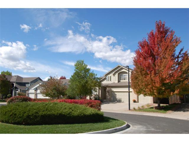 16873 Boreas Court, Parker, CO 80134 (#8055279) :: The Sold By Simmons Team