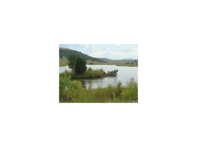 Tract 2 Nautique Circle, Larkspur, CO 80118 (MLS #8055317) :: 8z Real Estate